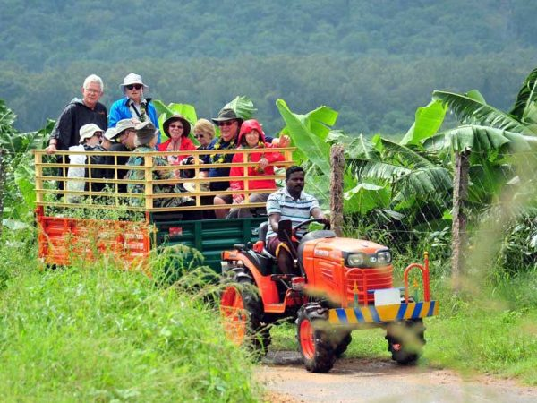 tourism in kannur travelco co operative