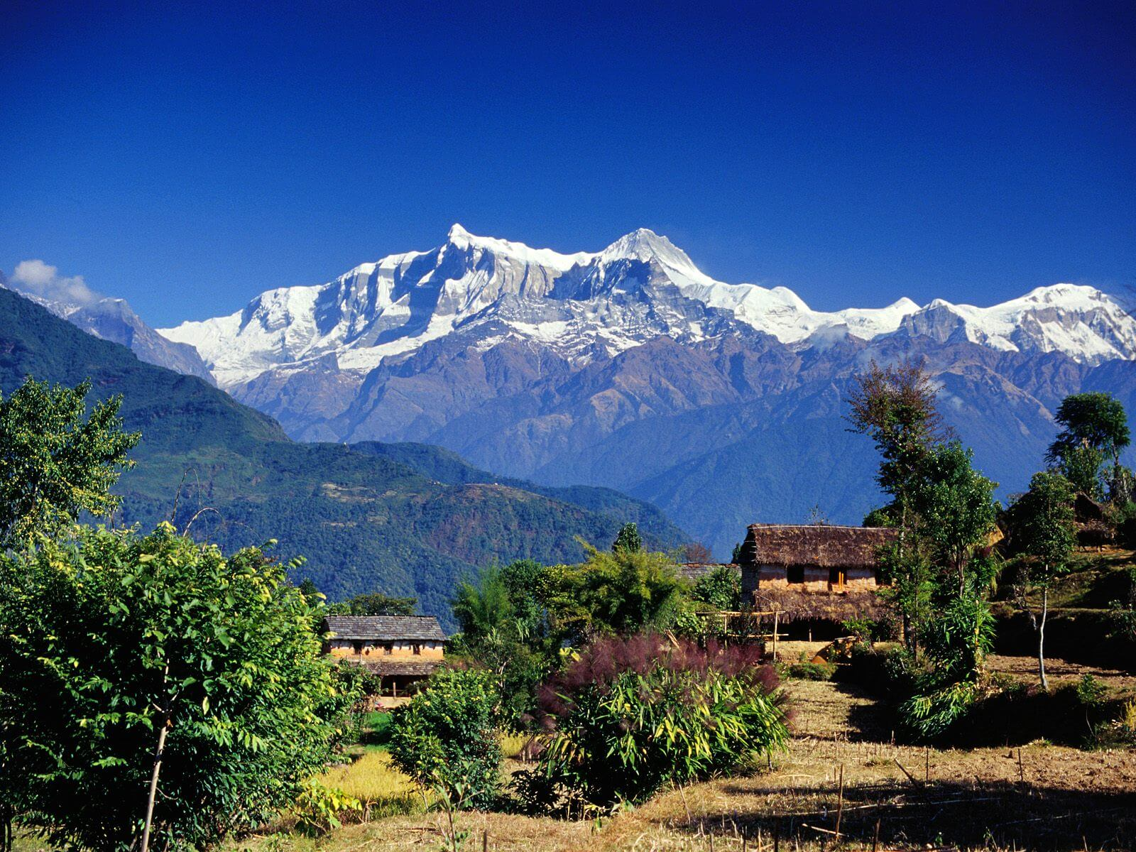 kashmir-travelco-tour-packages-2
