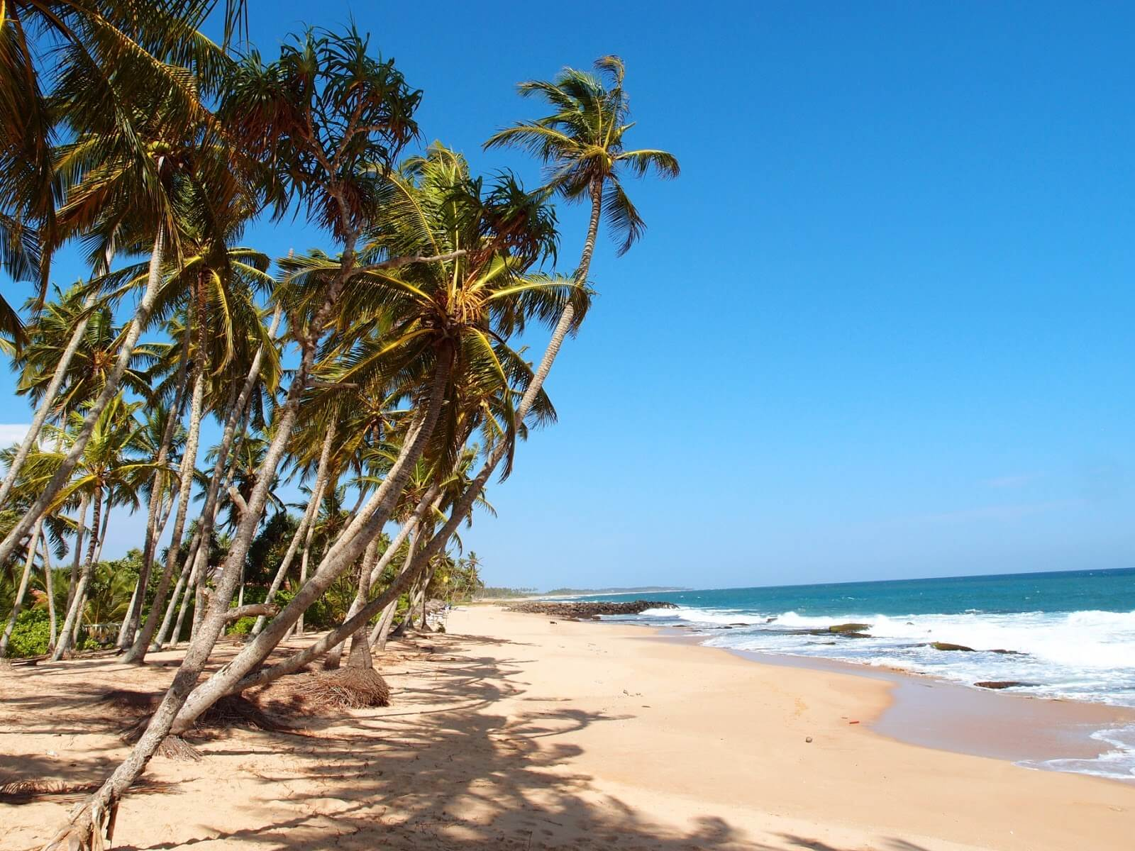 travelco-tour-packages-amazing-srilanka-1