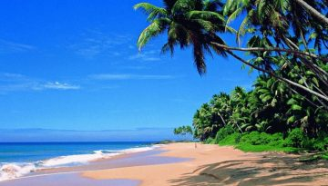 travelco-tour-packageourism in kannur travelco goa tour packages