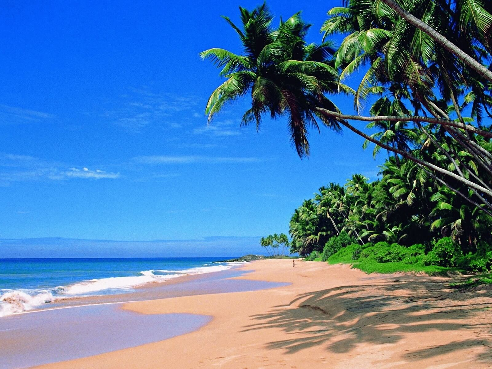 travelco-tour-packages-best-of-goa-1