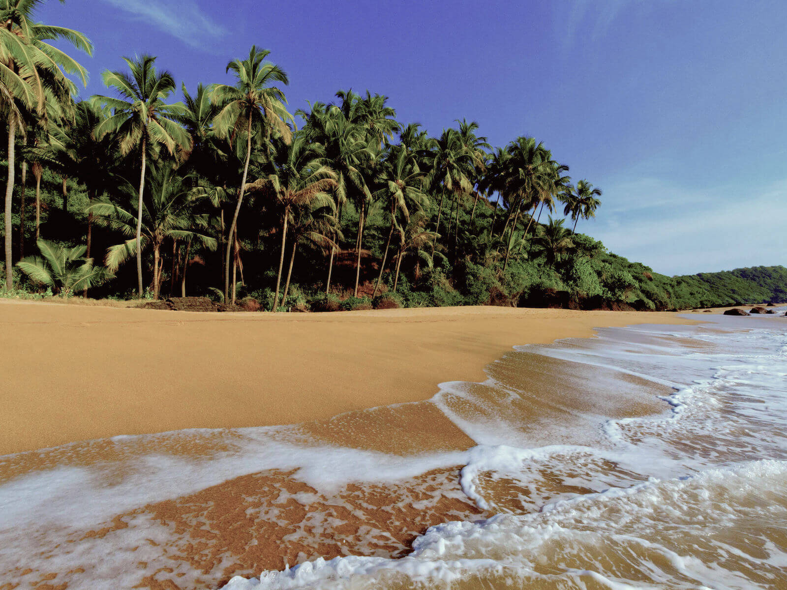 travelco-tour-packages-best-of-goa-5