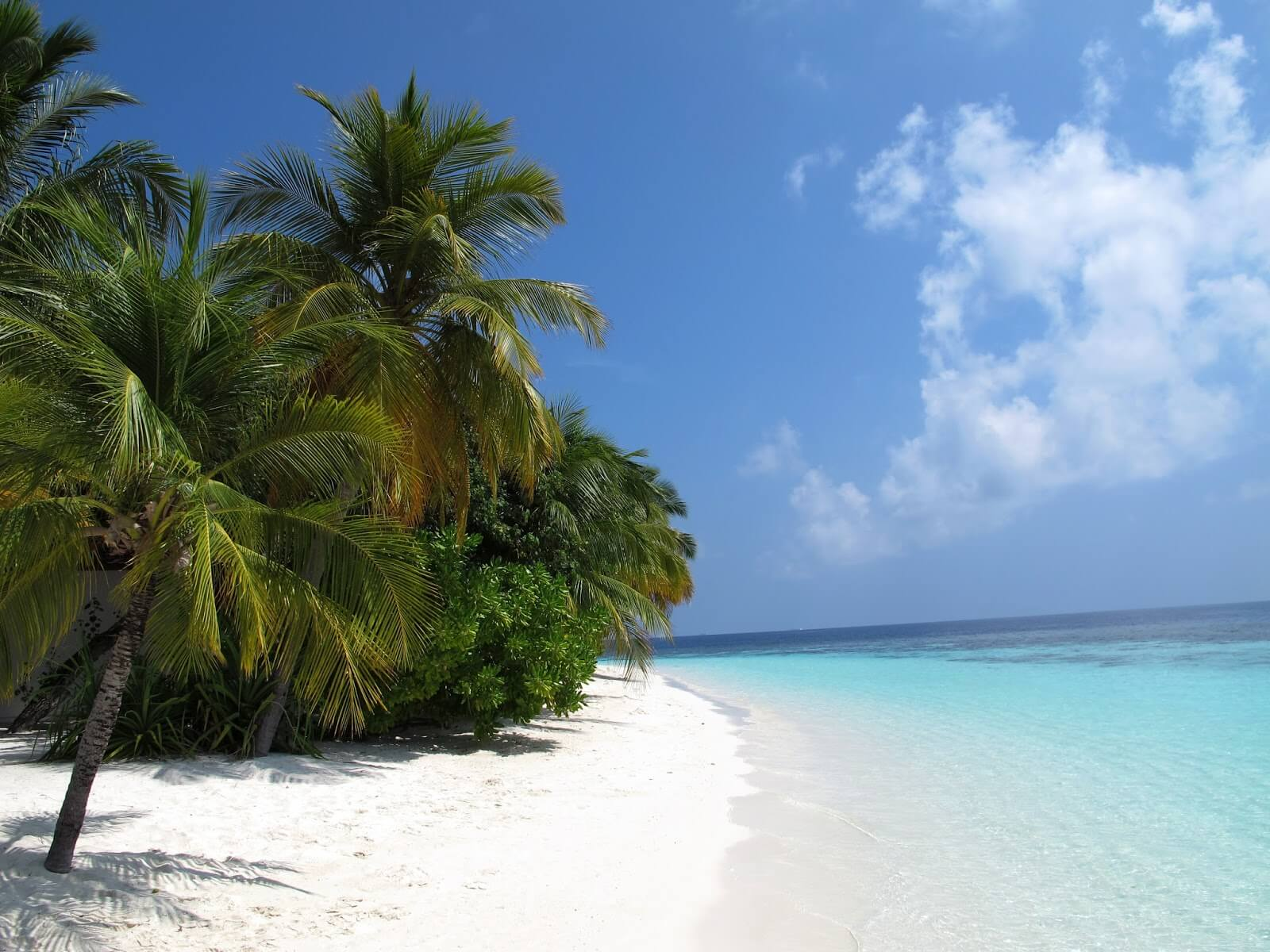 travelco-tour-packages-best-of-maldives-5