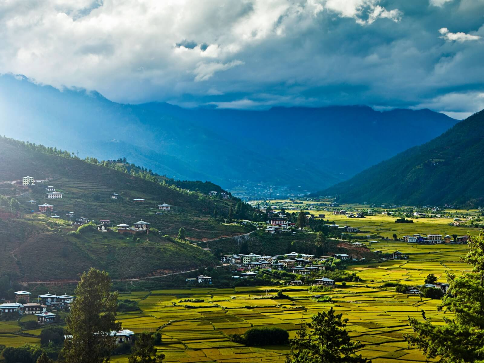 travelco-tour-packages-bhutan-5