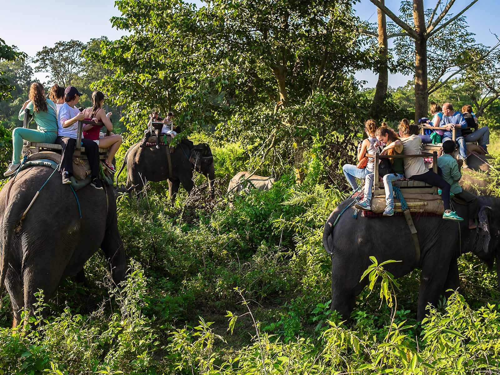 travelco-tour-packages-essential-nepal-3